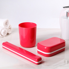 Набор дорожный, 3 предмета: мыльница, стакан, футляр для зубной щетки, цвет МИКС