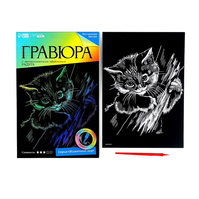 Гравюра «Котёнок» с металлическим эффектом радуги А4