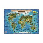 Интерактивная карта Мира для детей «Животный и растительный мир Земли», 101 х 69 см, ламинированная - Фото 1