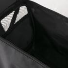 Сумка для обуви, отдел на молнии, цвет чёрный - Фото 4