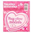Валентинки?наклейки «Ищу свою любовь», 9 х10 см