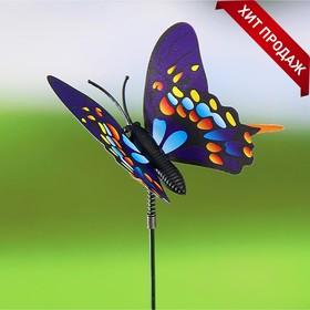Декоративный штекер 'Садовая бабочка' микс Ош