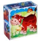 """Кубики """"Домашние животные"""", 4 штуки (в коробке) - Фото 2"""