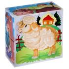"""Кубики """"Домашние животные"""", 4 штуки (в коробке) - Фото 3"""