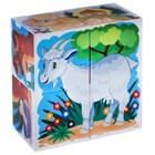 """Кубики """"Домашние животные"""", 4 штуки (в коробке) - Фото 4"""