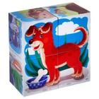 """Кубики """"Домашние животные"""", 4 штуки (в коробке) - Фото 5"""